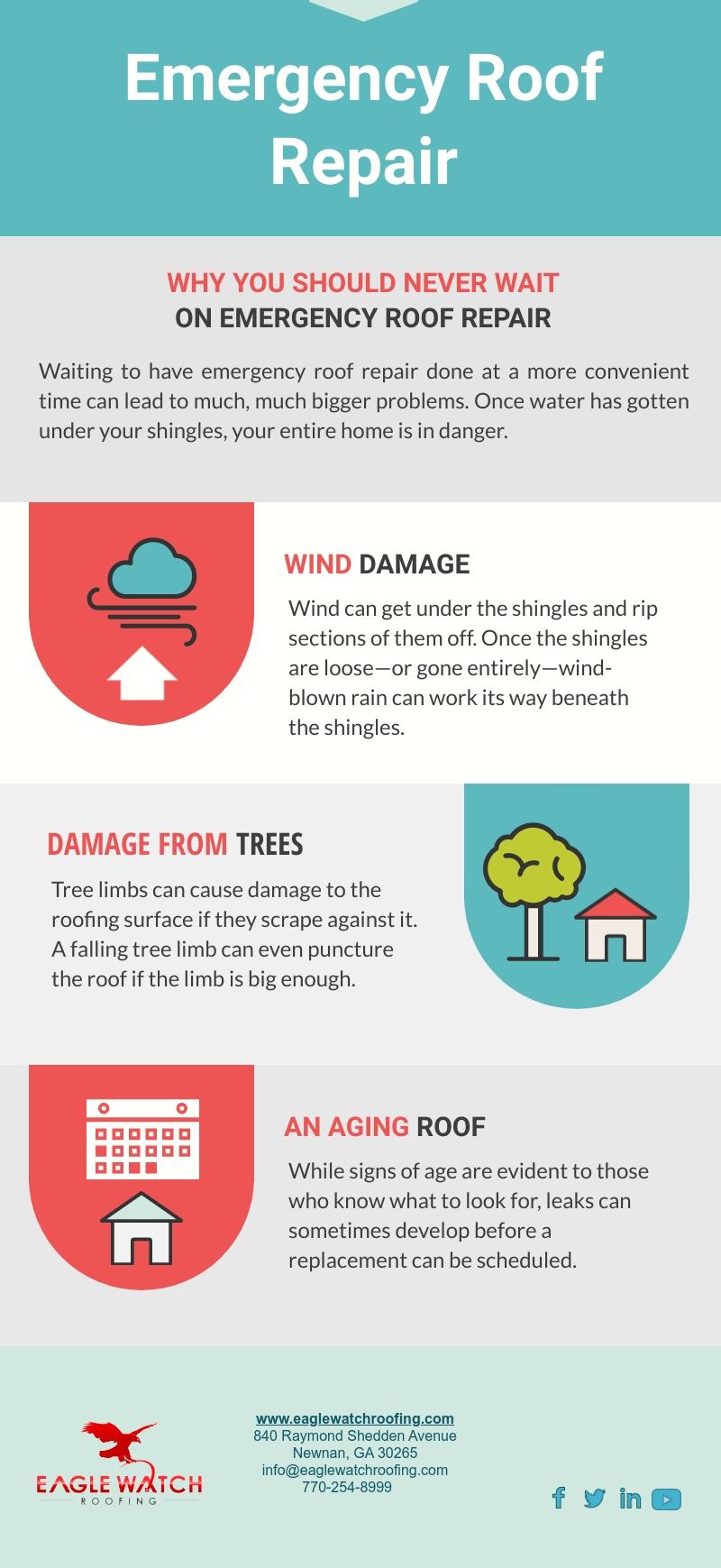 Emergency Roof Repair [infographic]