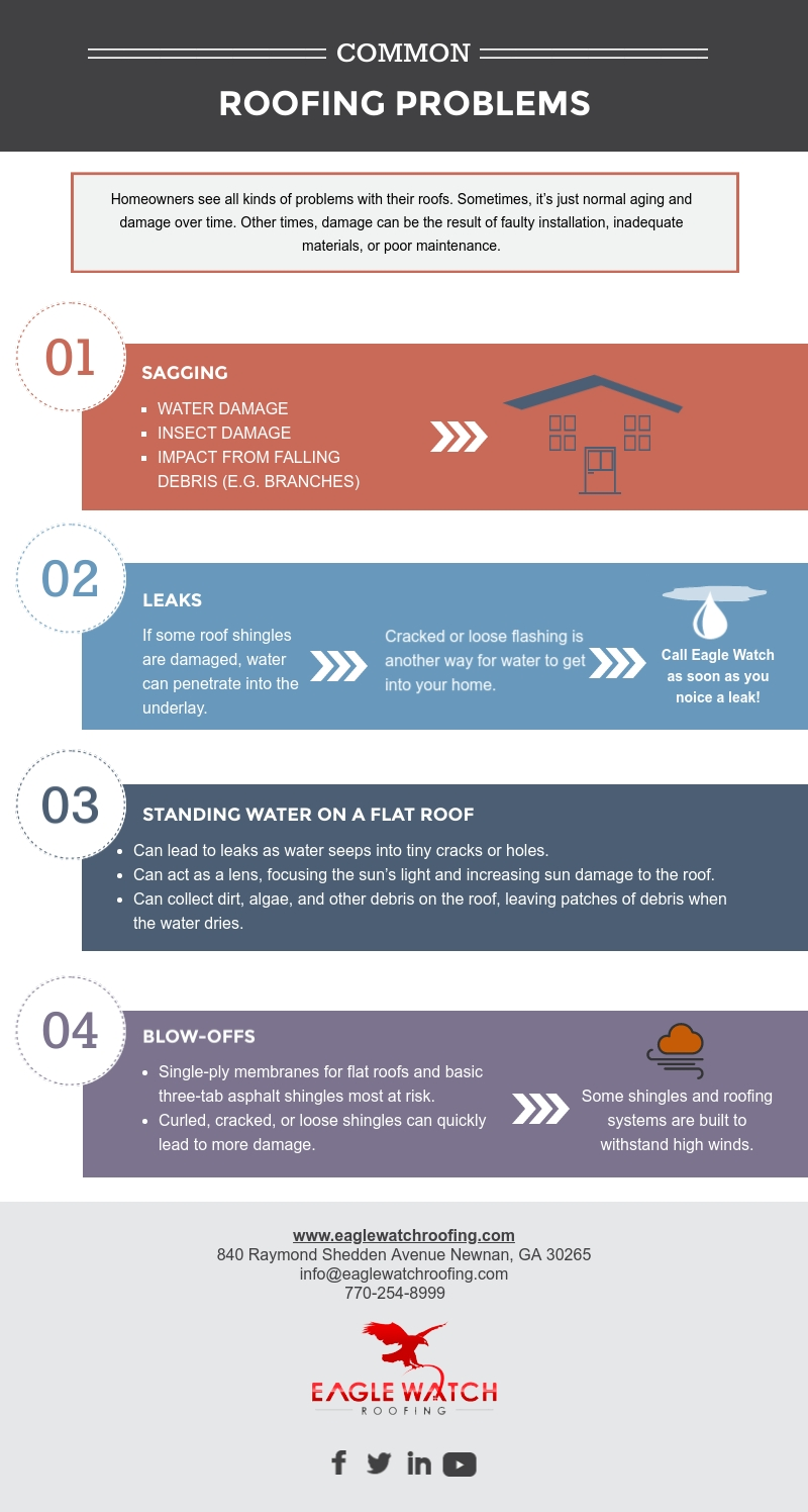 Common Roofing Problems [infographic]